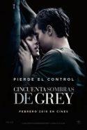 pelicula Cincuenta Sombras de Grey,Cincuenta Sombras de Grey online