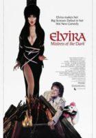 Elvira la Dama de la Oscuridad online, pelicula Elvira la Dama de la Oscuridad