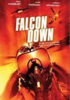 El secuestro del halcon online, pelicula El secuestro del halcon