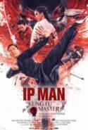 pelicula Ip Man: Kung Fu Master,Ip Man: Kung Fu Master online